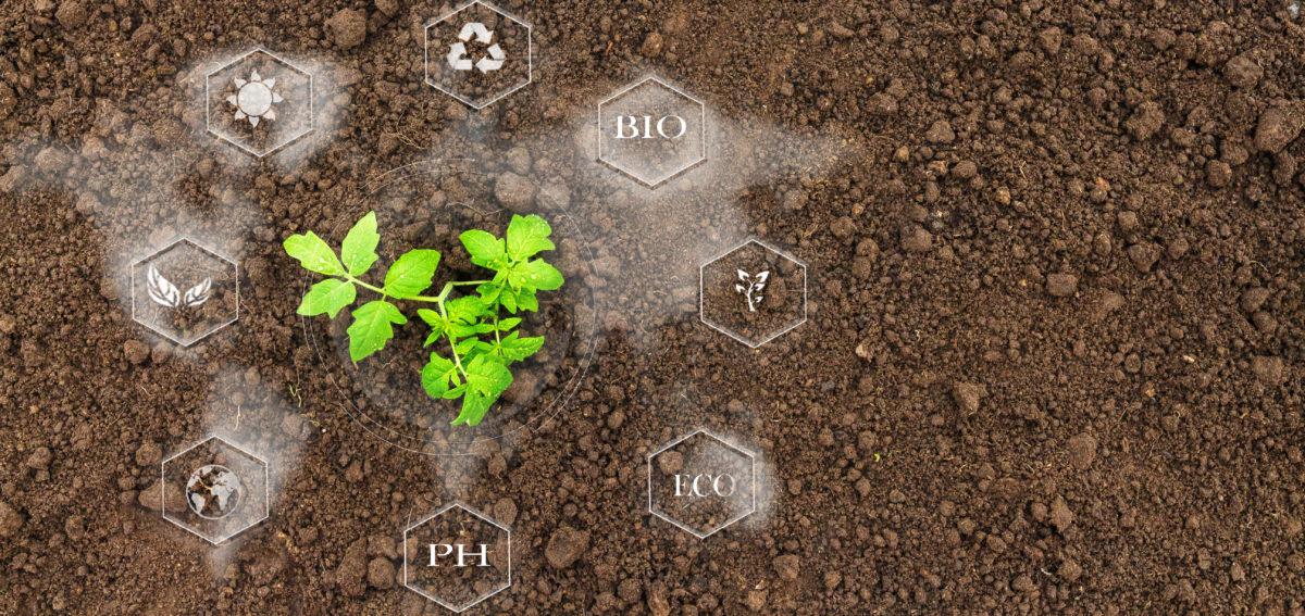Il boom dell'agricoltura 4.0: nuove soluzioni per l'agricoltura di precisione