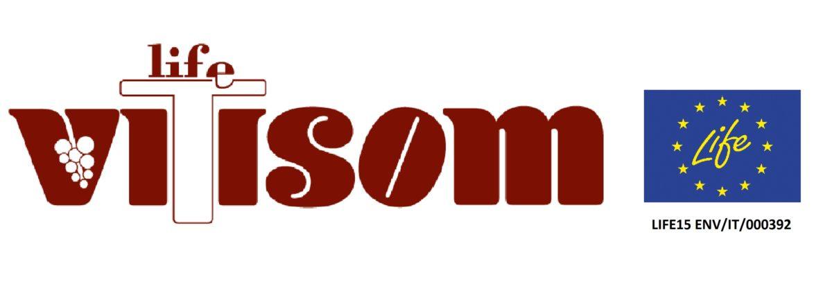 Come migliorare la tessitura dei suoli e la biodiversità con la viticoltura di precisione in tre semplici step: il progetto Vitisom