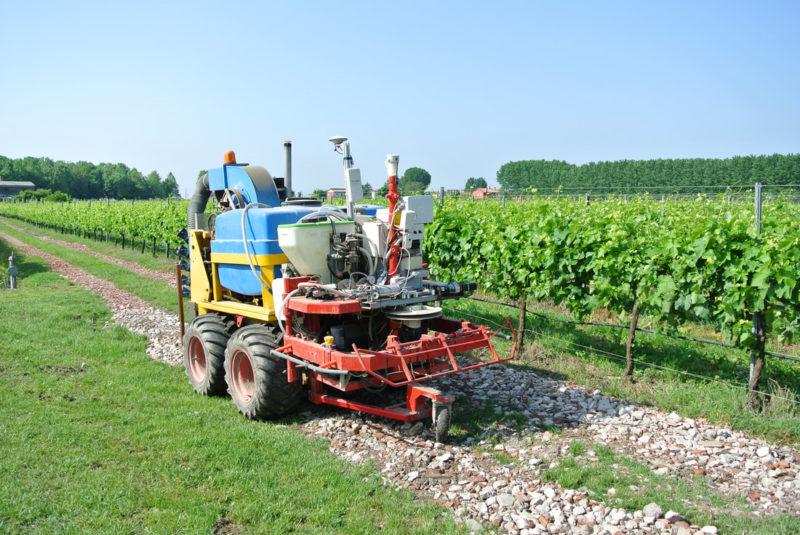 I robot agricoli: rivoluzione per l'Agricoltura di Precisione e l'applicazione del Diserbo