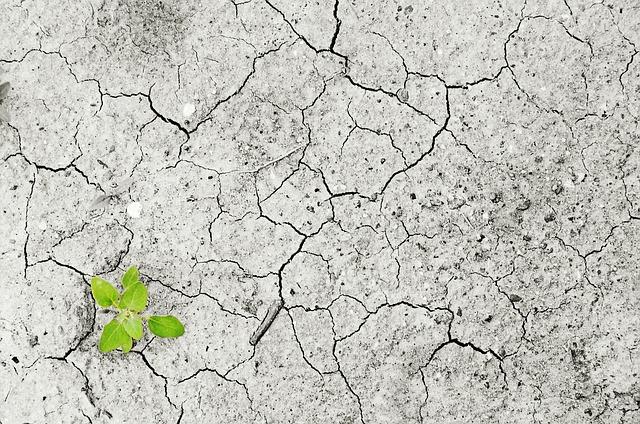 Come le tecnologie di Agricoltura di Precisione possono aumentare la produzione e ridurre l'inquinamento